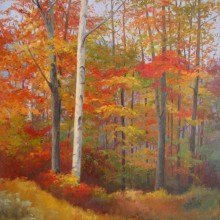 Autumn Woodlands